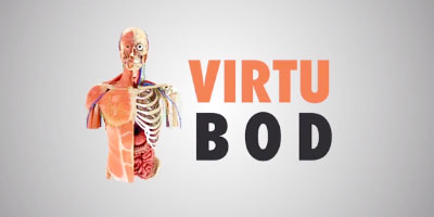 Virtubod - AR educational anatomy application