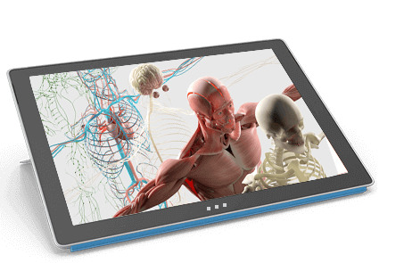 AR/VR Enabled Human Anatomy App